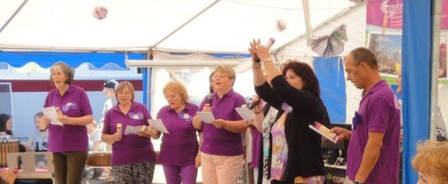 Landesarbeitsgemeinschaft (LAG) der Frauenzentren: Jetzt erst recht!